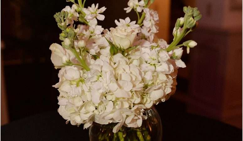 Ryan & Kimberlee | St. Augustine Wedding Planner | Treasury on The Plaza Wedding