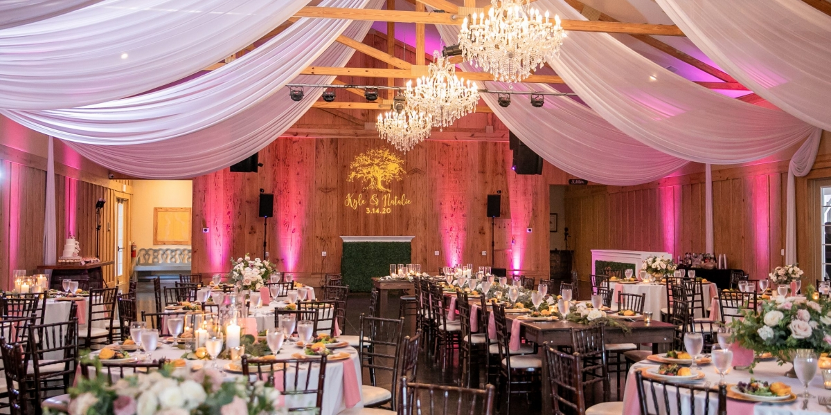 Bowing Oaks Plantation, Blush Wedding, The Eventful Gals, Party Solution Entertainment